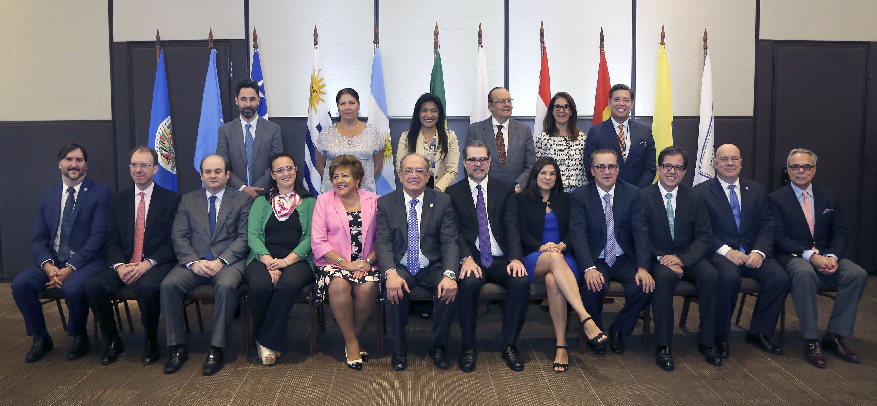 Daniel Zovatto, Regional Director for Latin America and the Caribbean, International IDEA, (seated far-right); together with representatives of the Electoral Bodies of MERCOSUR; UN; Human Rights Watch; OAS and other international experts.