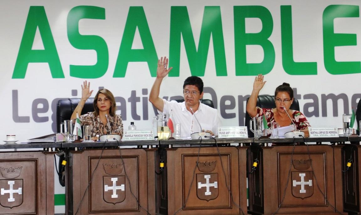 Asambleístas departamentales en sesión. Crédito de la imagen: IDEA Internacional.