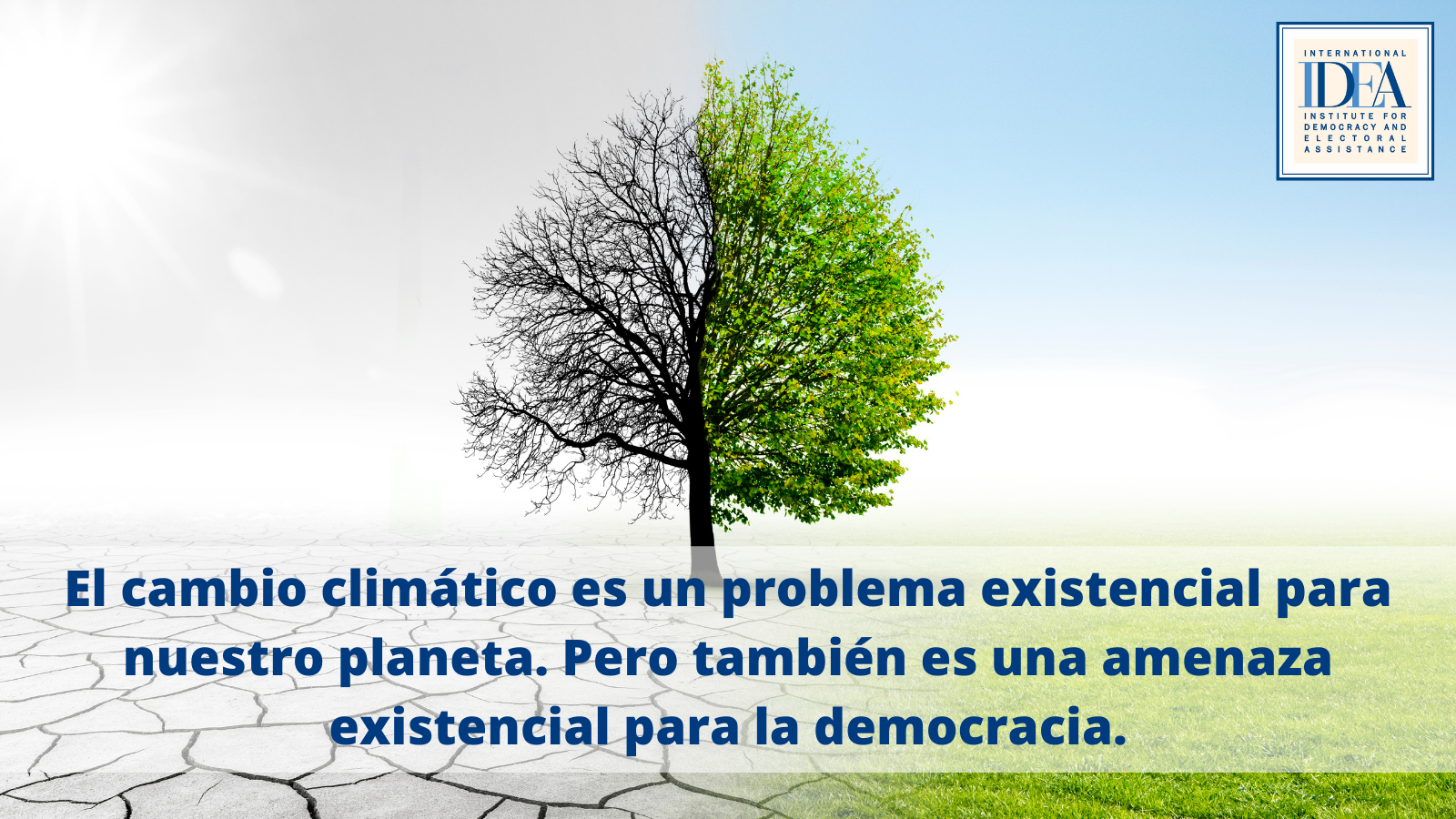 Cambio climático y democracia simbolizados en un árbol verde y gris
